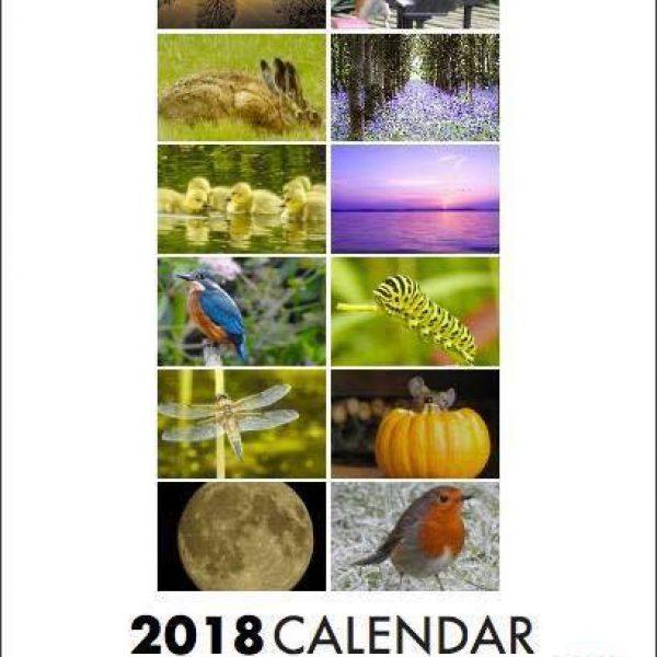 Jackie Suttling calendar